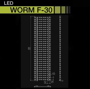 Worm30_000boton