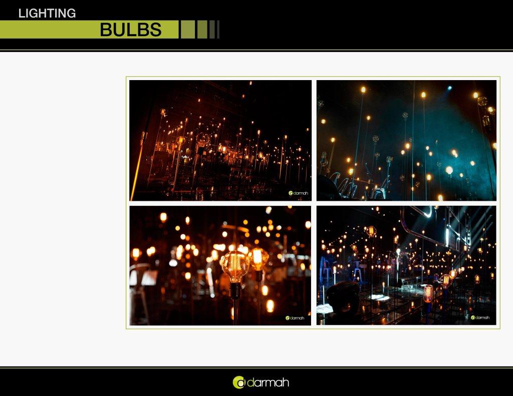 Bulbs_002
